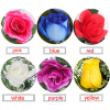rose by colors to davao, color roses in davao, buy rose by colors in davao