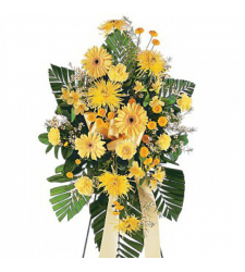 Carnations,Daisies,Palms,Gerberas and Fillers Online Order to Cebu Philippines