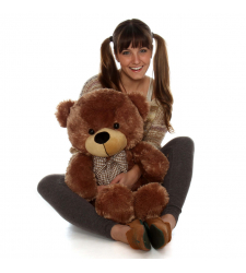 2 Feet Brown Color Giant Teddy Bear