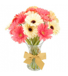 send 12 stems mixed gerberas in vase to davao