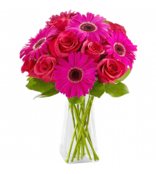 send 6 pink gerberas and 6 red roses in vase to davao