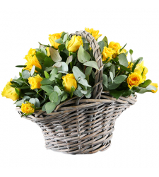 send 18 pcs. yellow color roses in basket to davao