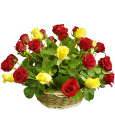 delivery 24 multi color roses in basket to davao