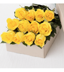 send 12 pcs. yellow color roses in box to davao
