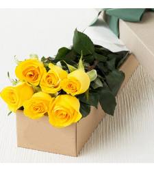 send 6 pcs. yellow Color roses in box to davao