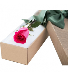 delivery single pink rose in box to davao