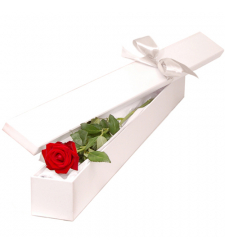 send single red color rose in box to davao