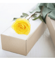 send single yellow color rose in box to davao