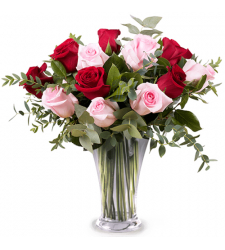 send 12 red and pink roses in vase to davao