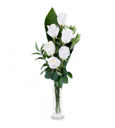 send half dozen white roses in vase to davao