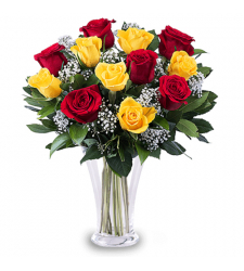 send 12 red and yellow roses in vase to davao