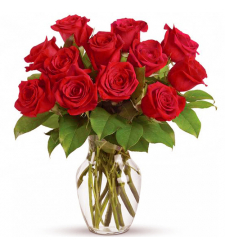 send 1 dozen red color roses in vase to davao