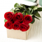 send 6 pcs. red color roses in Box to davao